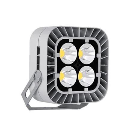 Светодиодный светильник FFL-sport 06-460-957-F40